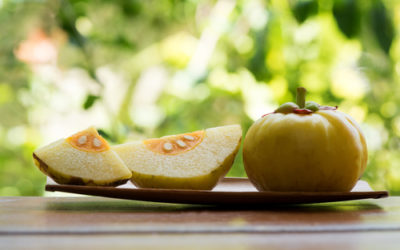 What is Garcinia Cambogia and What Are The Benefits